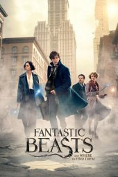 Nonton Online Fantastic Beasts and Where to Find Them Sub Indo