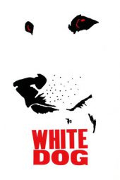 Nonton Online White Dog Sub Indo