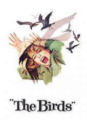 Nonton Online The Birds (1963) Sub Indo