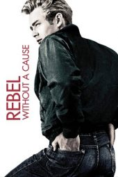 Nonton Online Rebel Without a Cause (1955) Sub Indo