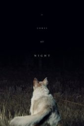 Nonton Online It Comes at Night (2017) Sub Indo
