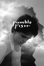 Nonton Online Rumble Fish (1983) Sub Indo