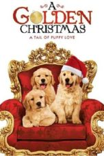 Nonton Movie A Golden Christmas (2009) Sub Indo