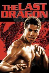 Nonton Online The Last Dragon (1985) Sub Indo