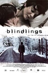 Nonton Online Blind Spot (2009) Sub Indo